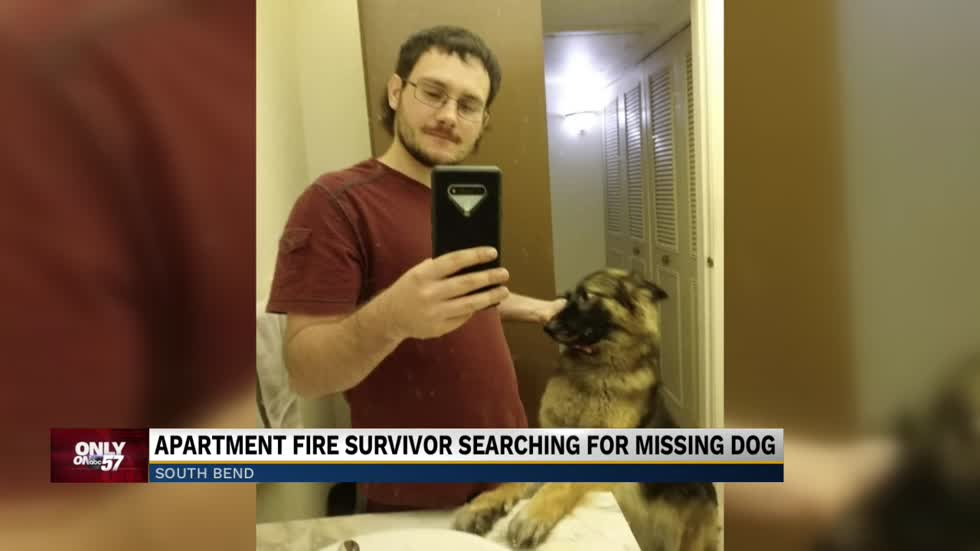 Apartment fire survivor searching for his missing dog
